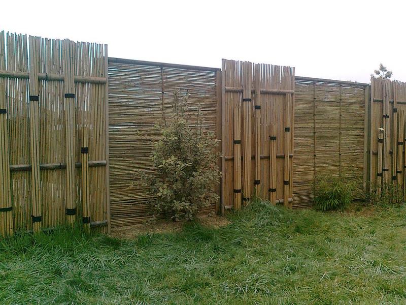 alexandresarrion paysagiste le bambou. Black Bedroom Furniture Sets. Home Design Ideas