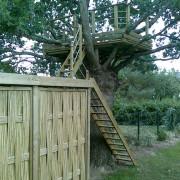 Cabane dans un chêne et abri à bois, Sautron