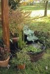 """Fontaine avec cascade """"Eau vive"""", paysagiste Courson"""