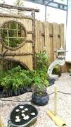 jardin japonais, japonisant, sec, tsuboniwa